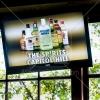 20120624_ashapirostudios_absolut_seattlepride_gallery_029