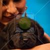 20121117_ashapirostudios_cysticfibrosisfoundation_annualgala_gallery_172