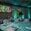 20121117_ashapirostudios_cysticfibrosisfoundation_annualgala_gallery_4