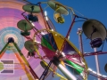 Party Big, WA!  Activities, animals, fun and games rule the Washington State Fair in Puyallup - a Seattle-area staple for over 100 years.