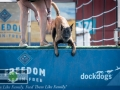 Scones, live music, and plenty of other attractions are staples, but it's the DockDogs that steal the show during the Washington State Fair Spring Fair!  Seattle Event Photography ©2015 Ari Shapiro - AShapiroStudios.com