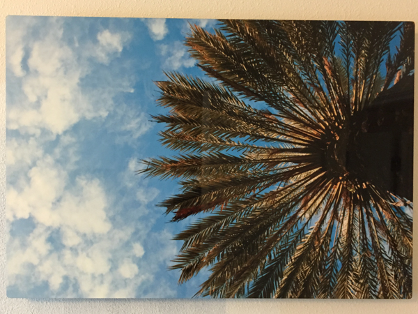 """Sunshade"" - Photo by Ari Shapiro.  Metal Print with wall hook, 1/2"" Standout from wall. Measures 18""w x 12""h. $40"